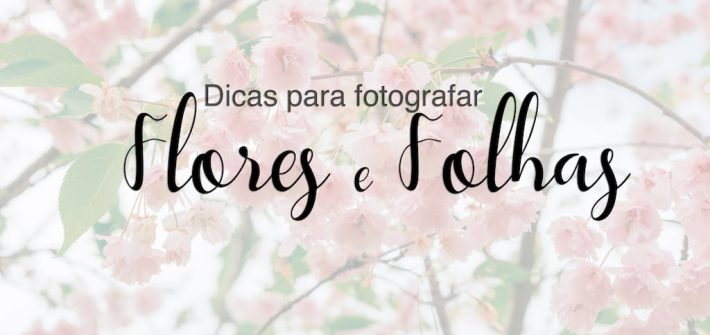 Veja dicas para fotografar flores e folhas durante suas viagens! Post ilustrados com imagens que podem ser usadas como fundo de tela para celular. Acesse!
