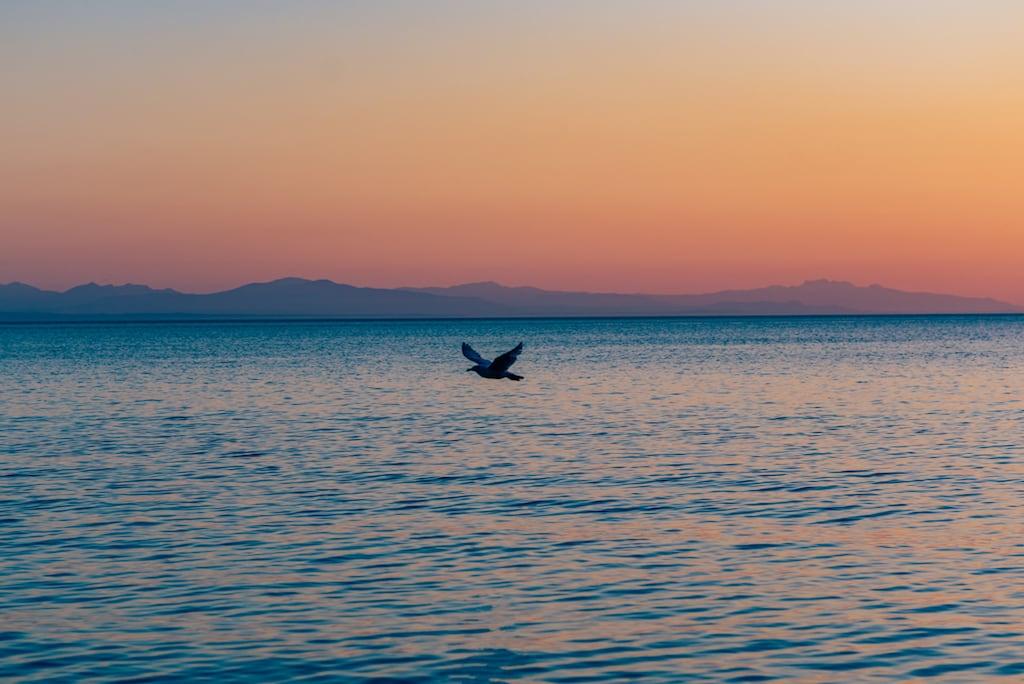 Pôr do sol na praia em Vancouver! Um belo passeio que vale a pena incluir no roteiro, clique para ler! #dicasdepasseios #Vancouver