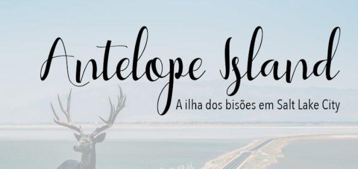 ista da estrada que leva a Antelope Island