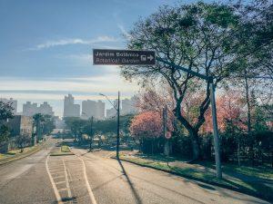 Rua que leva ao Jardim Botânico, veja como fica esse icônico ponto turístico na florada das cerejeiras!clique para ver! #curitiba #cerejeiras #jardimbotânico