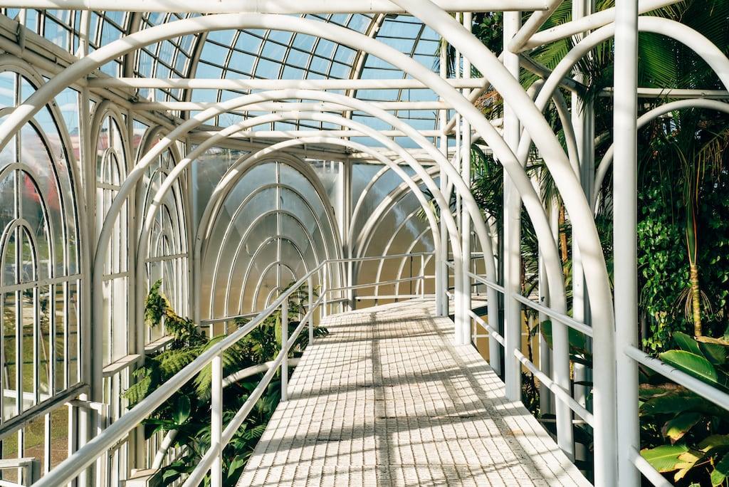 Parte de dentro da bela estufa no Jardim Botânico de Curitiba. Clique para ver fotos desse lindo cartão-postal na florada das cerejeiras. #Curitiba #JardimBotânico