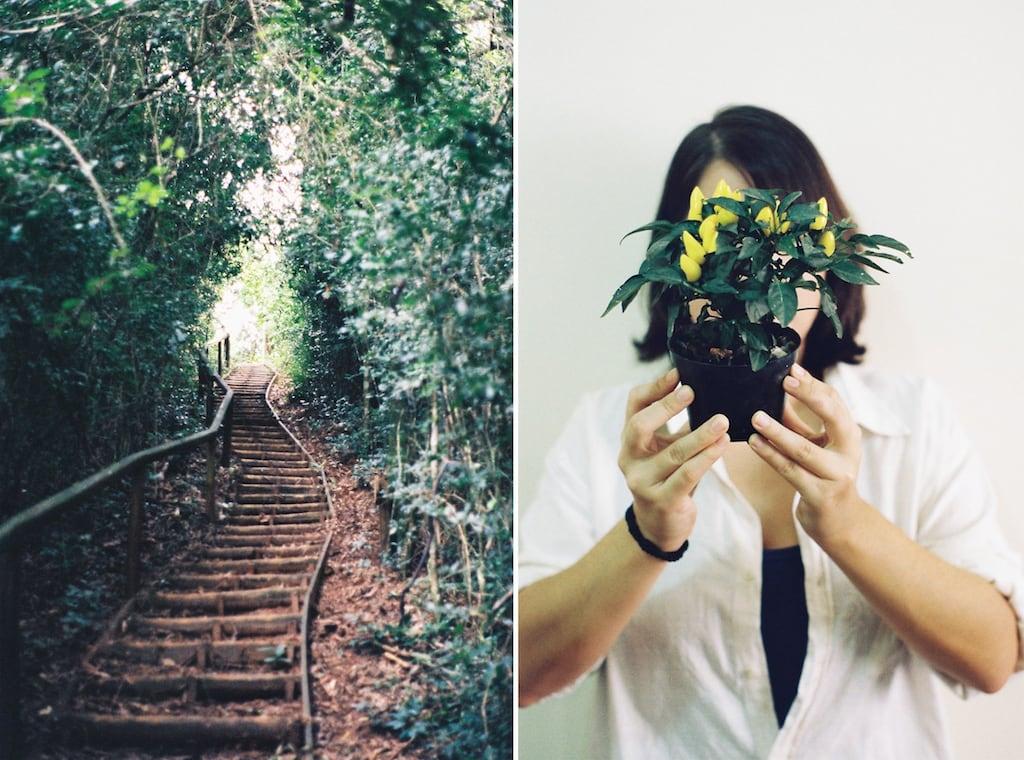 Fotos analógicas com filme Kodak ColorPlus ISO 200. Quer ver mais? Acesse o blog!