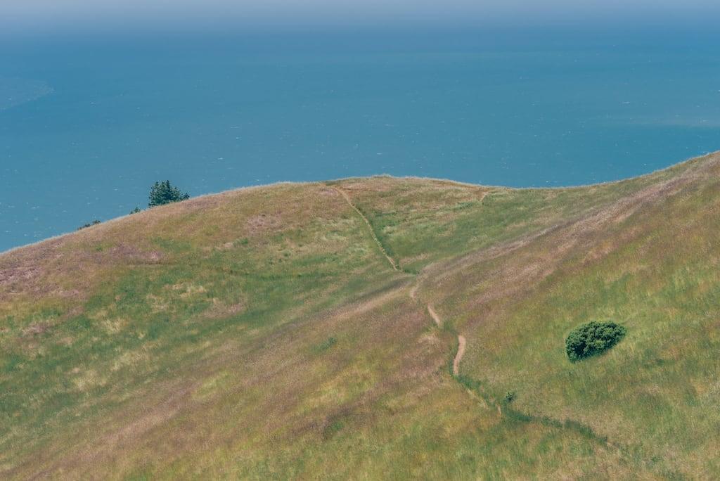 Nos arredores de San Francisco, a vegetação rasteira tem trilhas que levam ao mar. Entenda porque você deveria colocar esse belo parque no seu roteiro!