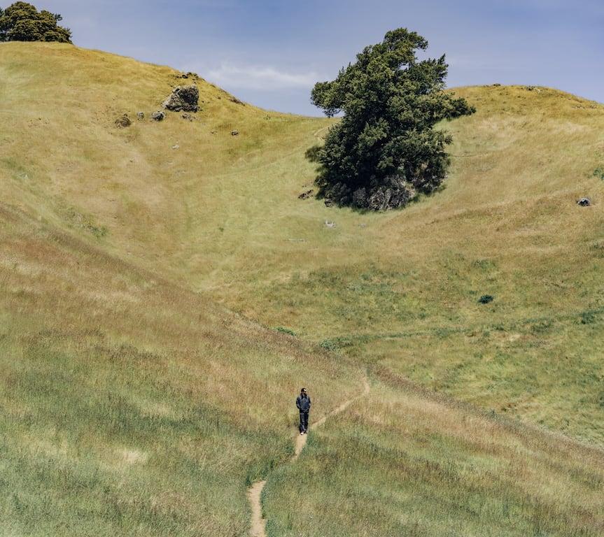 Conheça o Mount Tamalpais nos arredores de San Francisco e entenda porque você deveria colocá-lo no seu roteiro! #MountTamalpais #SanFrancisco #Adventure