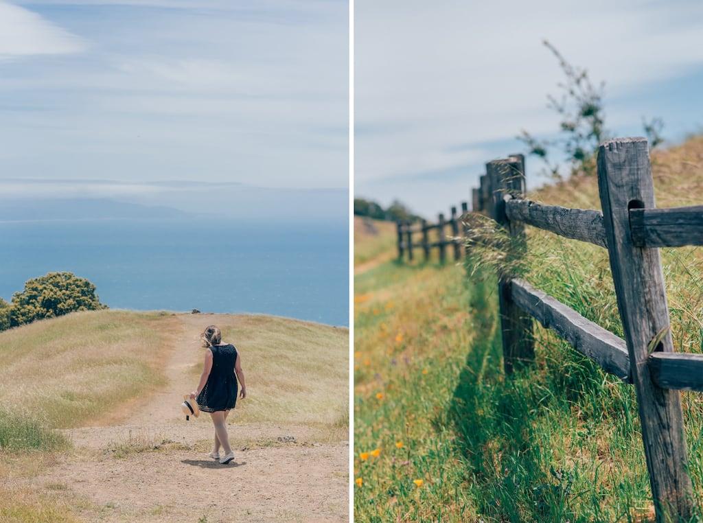 Vista em umas das trilhas do Mount Tamalpais! Conheça esse monte nos arredores de San Francisco. #MountTamalpais #SanFrancisco