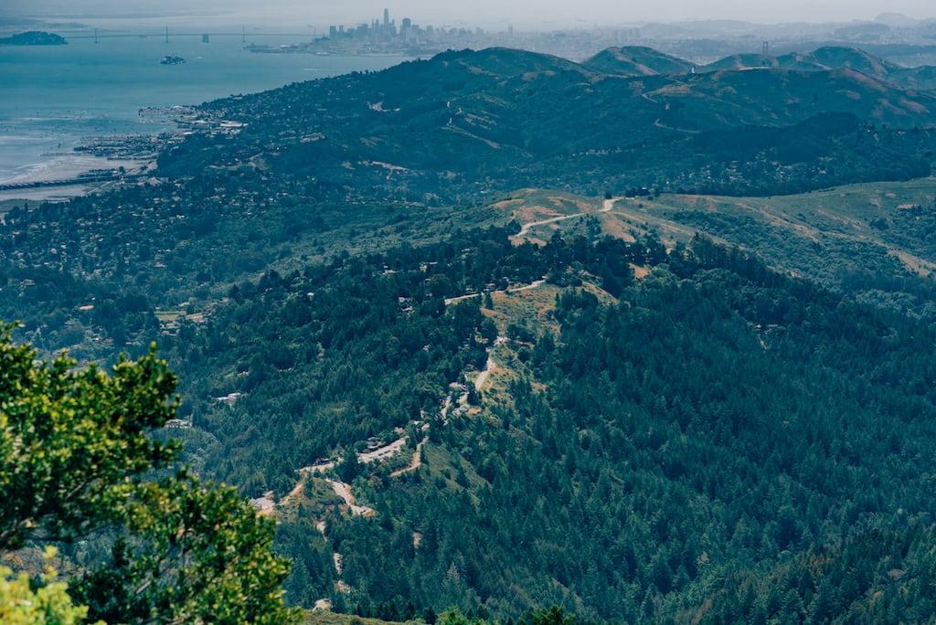 Vista do alto de um parque nos arredores de San Francisco. Entenda porque você deveria colocá-lo no seu roteiro! #Adventure