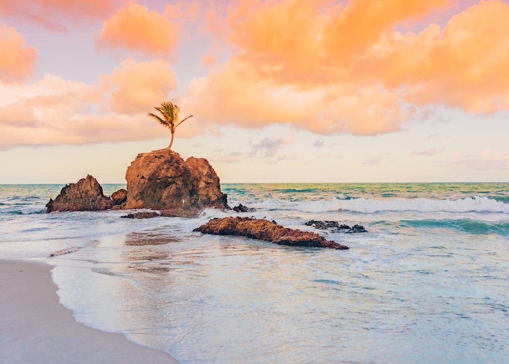 Conheça a praia de Tambaba no litoral sul de João Pessoa!Piscinas naturais, área naturalista e um pequeno coqueiro que cresceu sobre uma rocha fazem do lugar ainda mais incrível! Clique para ler. #euamojampa