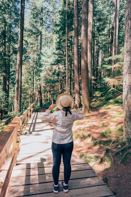 Conheça um belo parque em North Vancouver! Um passeio com trilhas, ponte suspensa, um rio de águas esverdeadas e muita natureza! Clique para saber mais!