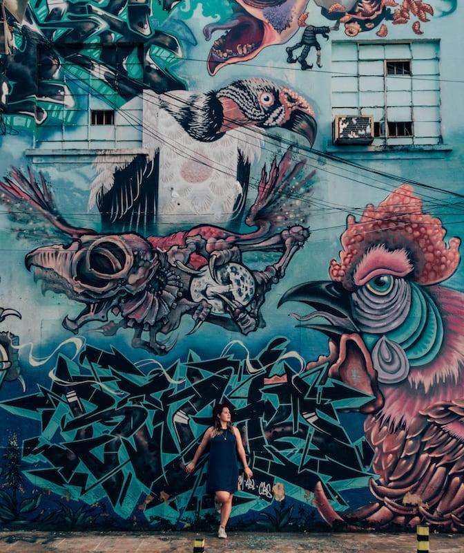 As belas artes de grafite impressionam pelo tamanho e cores! Esse cantinho de Goiânia vale a visita! Clique para saber mais sobre o lugar!