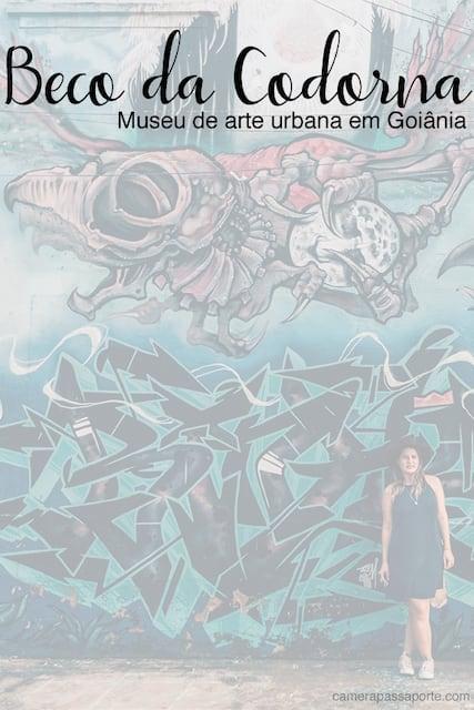 Conheça o Beco da Codorna, um museu de arte urbana em Goiânia! Lugar simples, mas excelente para uma sessão fotográfica divertida! #goiania