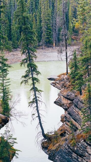 Athabasca Falls, um dos belos pontos das Rocky Mountains canadenses! Veja nosso roteiro compelto saindo de Vancouver de carro, com duração de 4 dias.