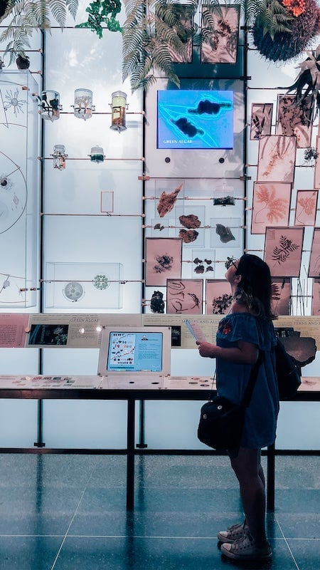 Veja 10 coisas que aprendi vivendo como nômade digital por um ano!