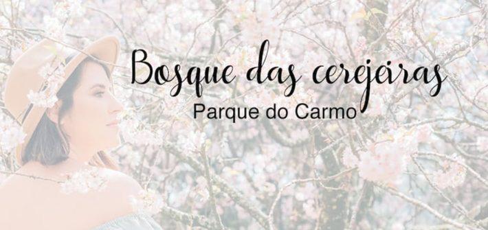 Veja fotos no bosque das cerejeiras no parque do Carmo, em São Paulo.