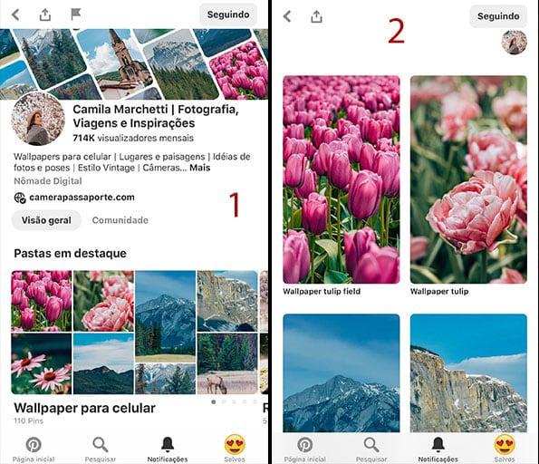 Imagem explicativa dos passos para baixar uma foto do Pinterest, primeiros passos.