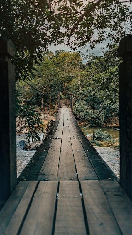 Ponte pênsil da cachoeira da Usina Velha em Pirenópolis! veja mais desse lugar lindo no link!