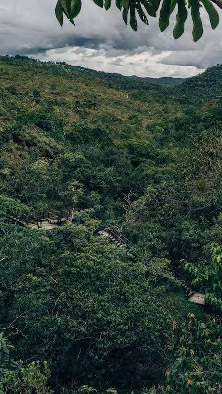 Imagem de parte da trilha do vale, em um passeio imperdível em Pirenópolis-GO!Clique para saber mais!