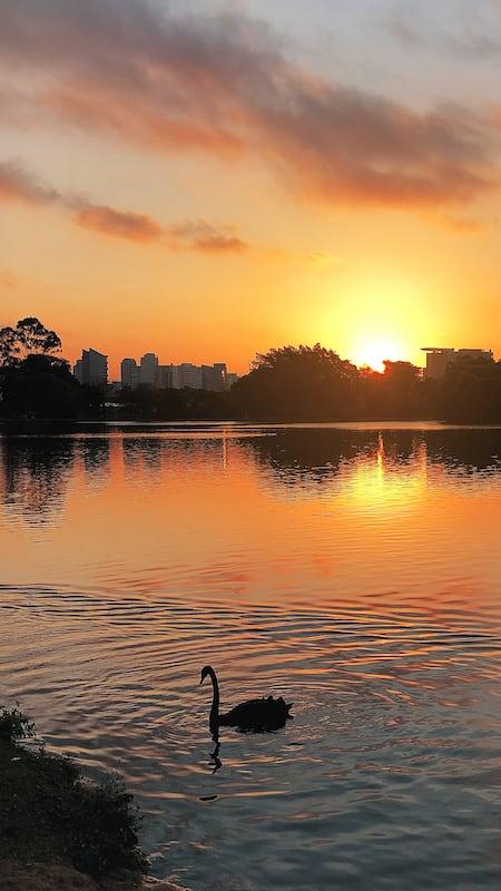 Um maravilhoso pôr do sol na capital paulista. Veja mais imagens no link!