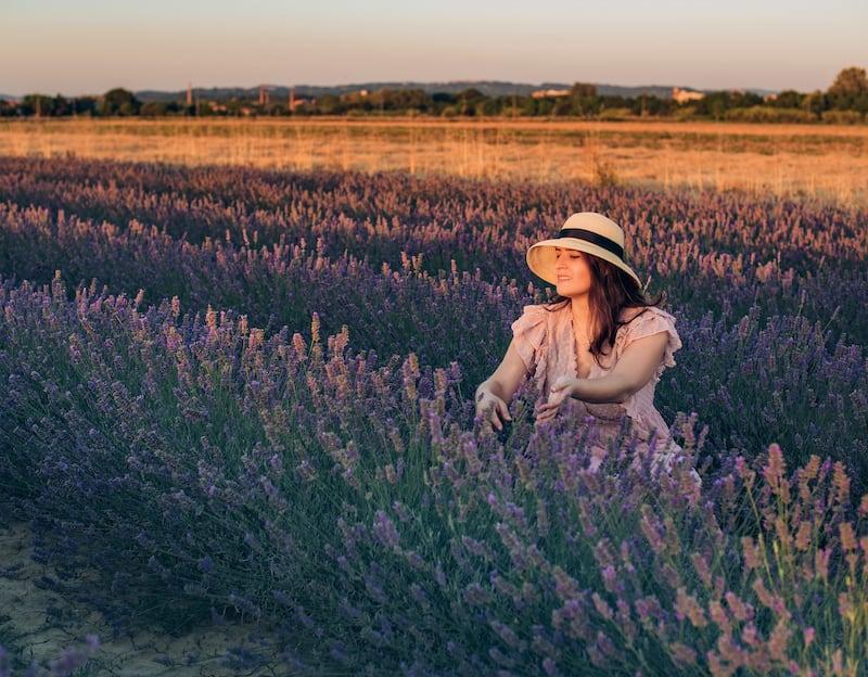 A flor de lavanda é conhecida no mundo todo pelo seu delicioso pVeja um ensaio fotográfico entre as flores!Clique para ler!