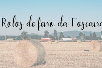 Veja dicas e fotos nos rolos de feno da Toscana! Clique para ler!