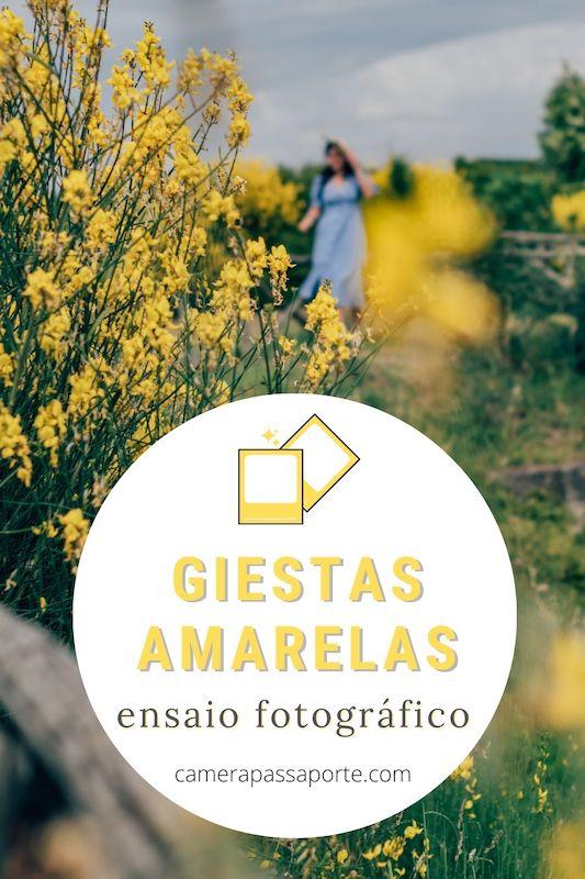 Veja um ensaio completo com as giestas amarelas, flores selvagens e super cheirosas. Saiba mais clicando no link.